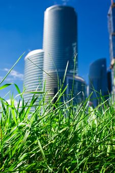 Free Skyscrapers And Grass Royalty Free Stock Photo - 9301735