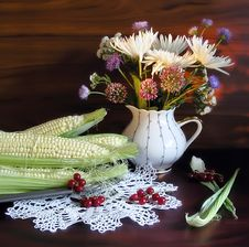 Free Flowers, Corn And Red Currant Stock Photos - 9302043