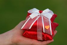 Free Gift And Hand Stock Image - 9302351