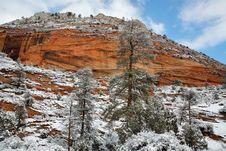 Free Snowfall At Zion Royalty Free Stock Photo - 9303815