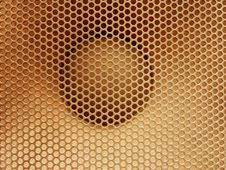 Free Lattice With Round Holes Royalty Free Stock Photography - 9303827