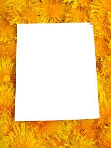 Free Card Blank Stock Image - 9305261
