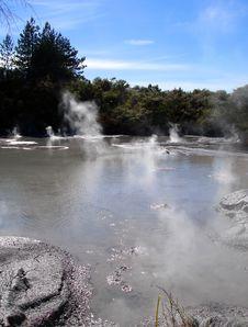 Free Geothermal Activity, Rotorua, New Zealand Stock Photography - 9305432
