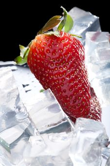 Free Strawberry With Ice Stock Image - 9306181