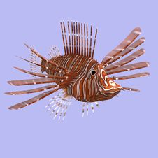 Free Lionfish Royalty Free Stock Images - 9308169
