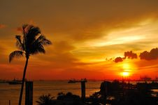 Free Tropical Sunset With Coconut Tree Near The Sea Royalty Free Stock Photo - 9308505