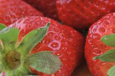 Free Strawberry Royalty Free Stock Photo - 9310365