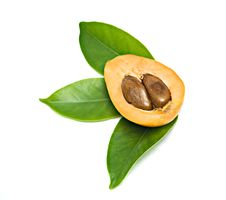 Section Of Loquat On Leaves Stock Image