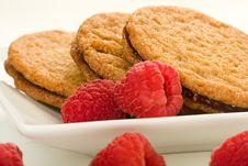 Raspberry Ginger Snaps Royalty Free Stock Photo