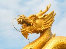 Free Golden Dragon Head Royalty Free Stock Images - 9313139