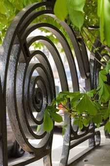 Free Element Of Art Nouveau House Fence Stock Images - 9313464
