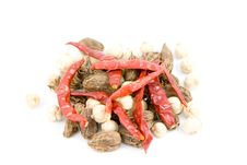 Free Dried Red Pepper And Cardamom On A White Backgroun Stock Image - 9316661
