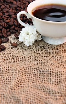 Free Coffee Concept Stock Photo - 9322950