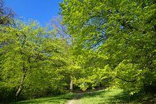 Free Rural Road Stock Image - 9323201