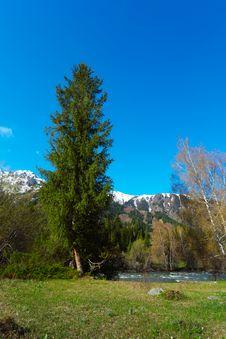 Free Mountain Landscape Stock Image - 9323921