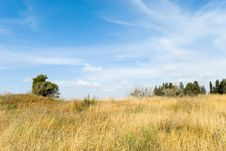 Free Landscape Royalty Free Stock Images - 9323999