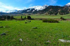 Free Mountain Landscape Stock Image - 9324341
