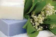 Free Soap With Lilies Of The Valley Stock Image - 9324461