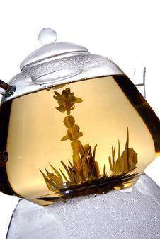 Free Green Tea Stock Photo - 9325710