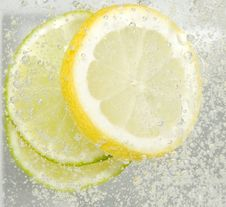 Free Lemon And Lime Stock Photo - 9325890