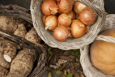 Vime Baskets With Onions And Other Vegetables Royalty Free Stock Image