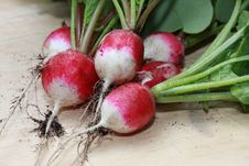 Free Fresh Radishes On A Chopping Board Royalty Free Stock Images - 9329579