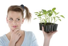 Free Girl Holding Young Plants Royalty Free Stock Image - 9330866