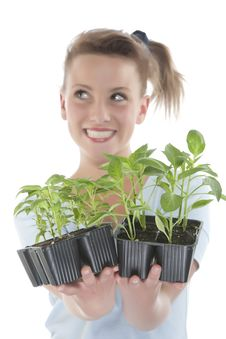 Free Girl Holding Young Plants Royalty Free Stock Images - 9330919