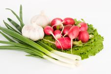 Free Spring Onions, Garlic, Lettuce And Radish Royalty Free Stock Images - 9332039