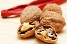 Free Walnuts Stock Photo - 9332960