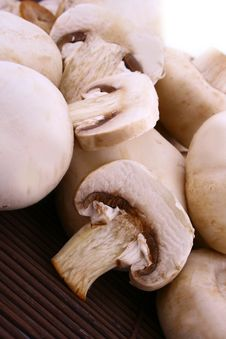 Free Mushroom Royalty Free Stock Photo - 9333155