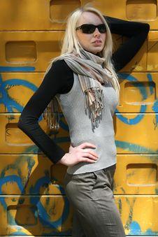 Free Portrait Of Fashion Woman Stock Photos - 9333903
