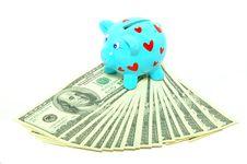Free Piggy Bank Royalty Free Stock Photos - 9334168