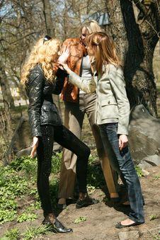 Quarrel Between Friends Stock Photography