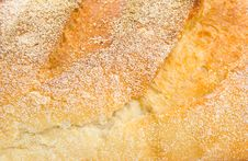 Free Sour Dough Bread Royalty Free Stock Photography - 9334567