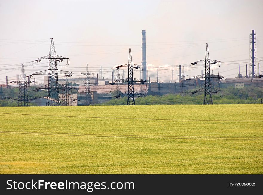 Landscape of flowering yellow field and power lines