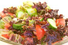 Free Fresh Salad Stock Photos - 9340023