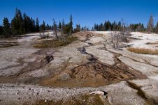 Free Brook In Yellowstone Stock Images - 9342594