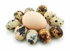 Free Group Of Raw Quail Eggs Isolated On White Royalty Free Stock Photo - 9343865