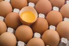 Raw Brown Eggs In An Egg Carton Stock Image