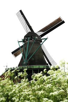 Free Windmill Village And Flower Royalty Free Stock Images - 9344249