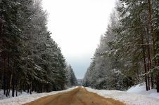 Free Winter Road. Royalty Free Stock Photography - 9346667