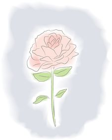 Watercolor Rose Stock Images