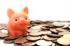 Free Small Pig Sits On Coins Royalty Free Stock Images - 9350019