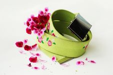 Free Belt With Purple Flowers Royalty Free Stock Photography - 9352297