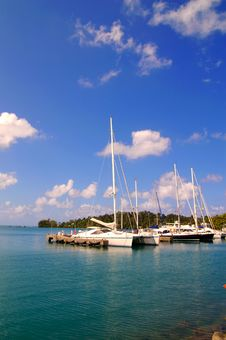 Yachts Docked At A Tropical Harbor Stock Images