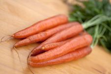 Free Bunches Of Fresh Carrots For Sale At A Market Royalty Free Stock Photo - 9353045