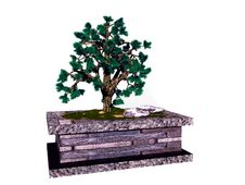 Free Bonsai Tree Stock Image - 9353171