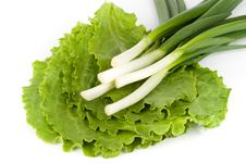 Free Spring Onions On  Lettuce Stock Image - 9356171