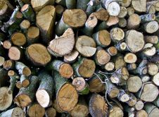 The Wood Pile Stock Image